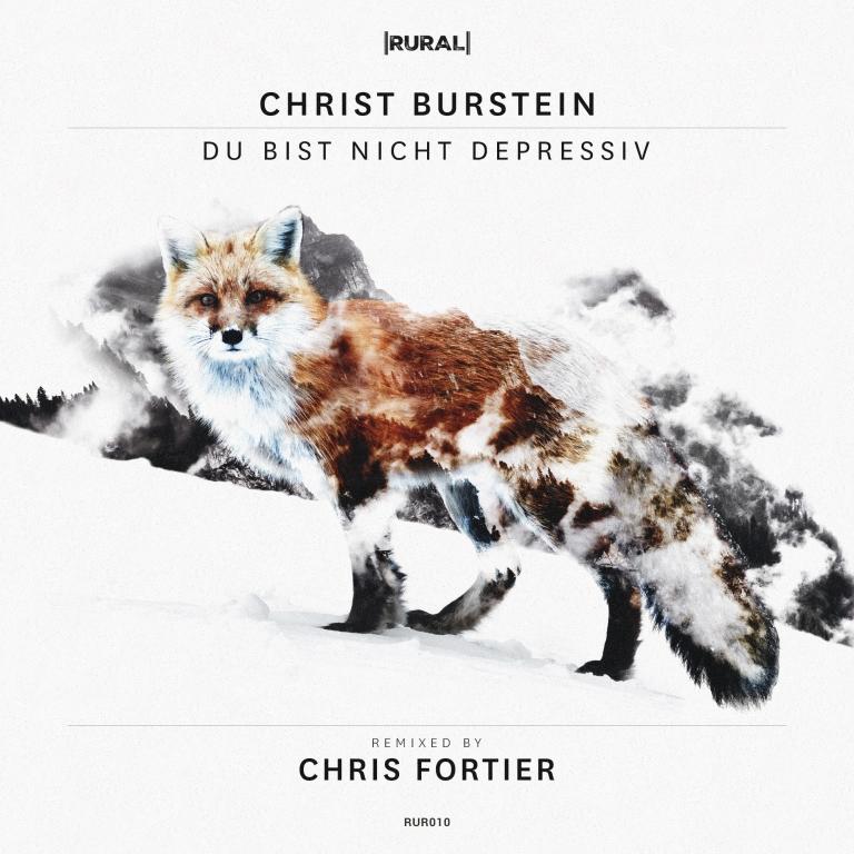 Du Bist Nicht Depressiv by Christ Burstein
