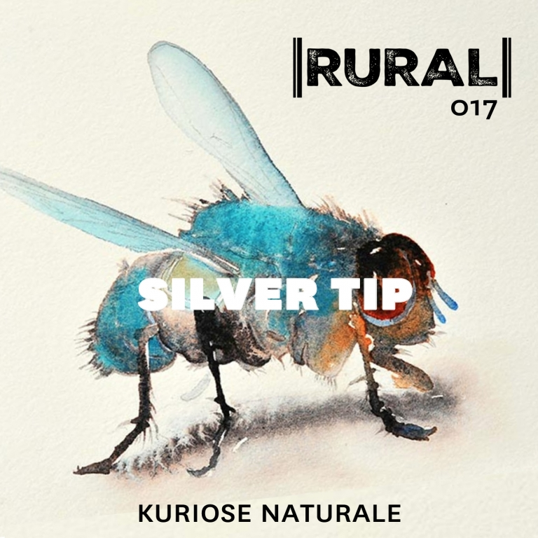SILVER TIP by KURIOSE NATURALE